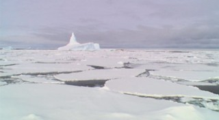 ice_islands